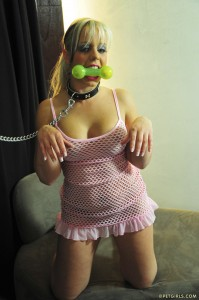 blond girl in a dog collar sits up and begs for her chew toy